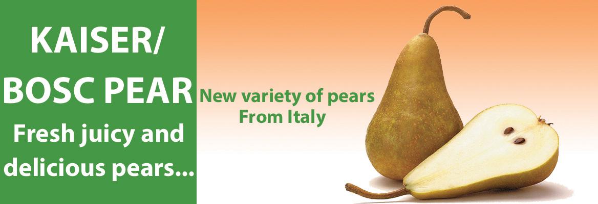 Kaiser pear_2017_02_08_1526